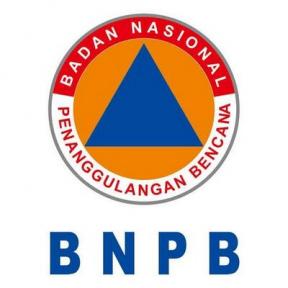 bnpb.go.id/